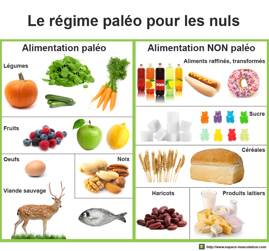 alimentationregimepaleo